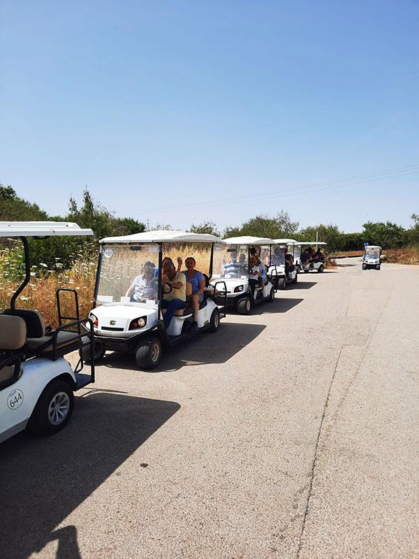 רכבי גולף בניר דוד